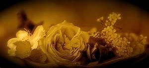 Berühmte Kunstwerke Der Romantik : epoche romantik merkmale romantik epoche merkmale vertreter und werke romantik kunst merkmale ~ One.caynefoto.club Haus und Dekorationen