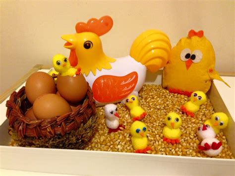 life cycle   chicken funny crafts