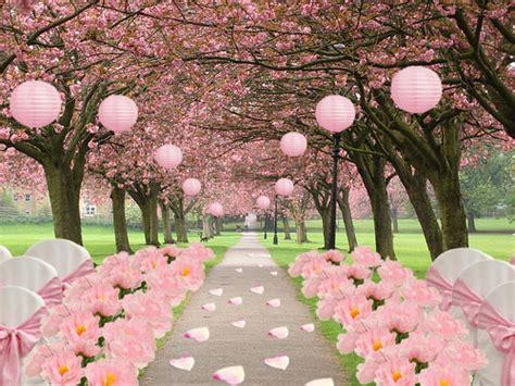 cherry blossom wedding  efavormart  official