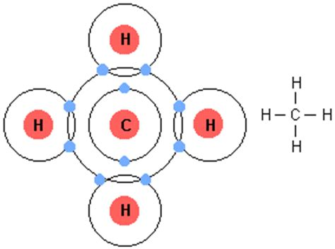 how many covalent bonds can a carbon atom form topic 2 molecular biology lowes ib