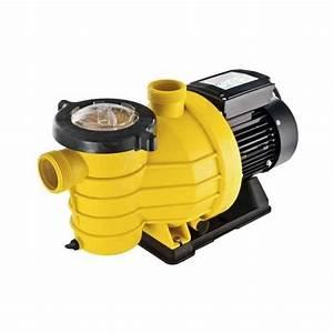 Pompe Piscine Intex 6m3 : pompes de filtration pour piscines comparez les prix pour professionnels sur page 1 ~ Mglfilm.com Idées de Décoration