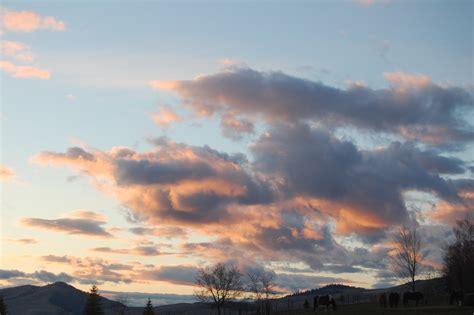 View Of The Sky by Sky Views Sky View Farm
