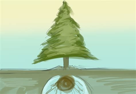 how to plant a living christmas tree 9 steps with pictures
