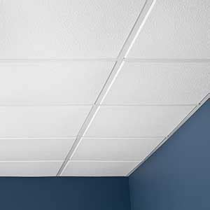 ceiling photo gallery genesis white