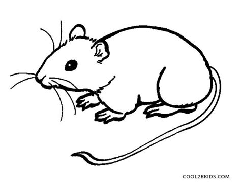 rat coloring pages kidsuki