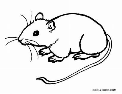 Mouse Coloring Pages Printable Rat Drawing Rodent
