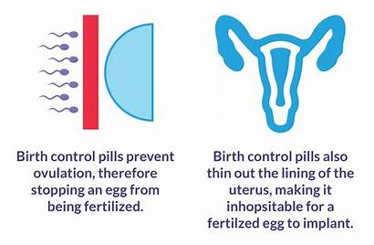 Birth Control Pill Pills Ovulation Guide Definition