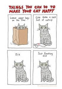 things to about cats things you can do to make your cat happy