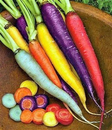 colorful carrots colorful carrots pictures photos and images for