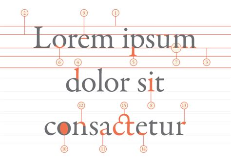 learning the basics of typography anatomy of letters paint bucket launchdm blog