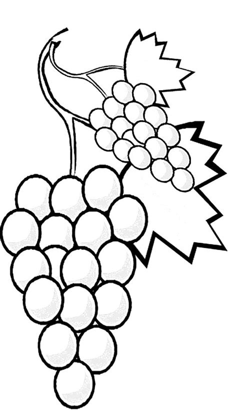 coloring page fruit  vegetables coloring pages