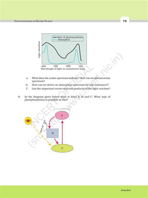 ncert exemplar solution  class  biology chapter