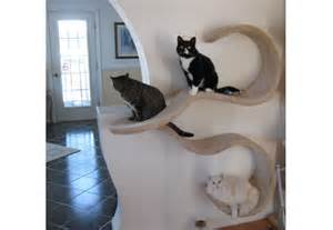 cat shelves wall mounted cat shelf the wave