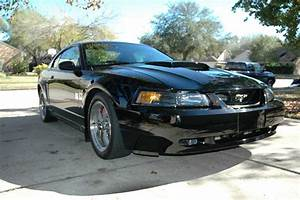 4th gen black 2001 Ford Mustang Bullitt GT V8 5spd [SOLD] - MustangCarPlace