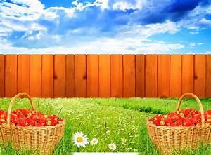 Garden Pictures For Background - WallpaperSafari