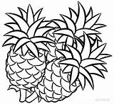 Pineapple Coloring Fruit Printable Fruits Drawing Drawings Pineapples Cool2bkids Sheets Sheet Line Easy Cartoon Apple Getdrawings Clipartmag Gangster Olds Unique sketch template