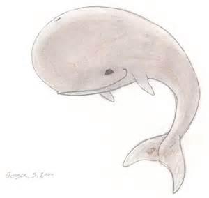 Cute Whale Drawings