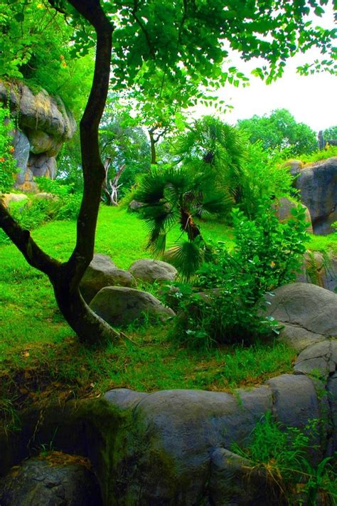natural green wallpaper allwallpaperin  pc en
