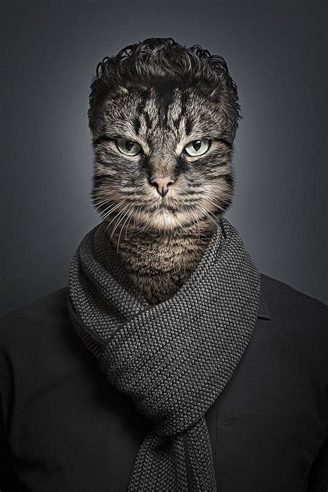 funny portraits  cats dressed   owners