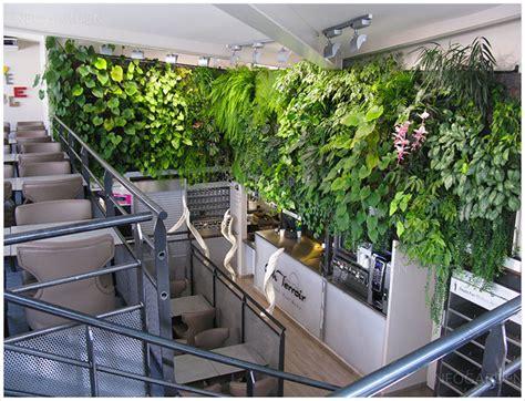 cuisine vegetale spécialiste du mur végétal intérieur mur végétalisé
