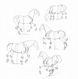 How to Draw Horses: Step-by-Step Instructions
