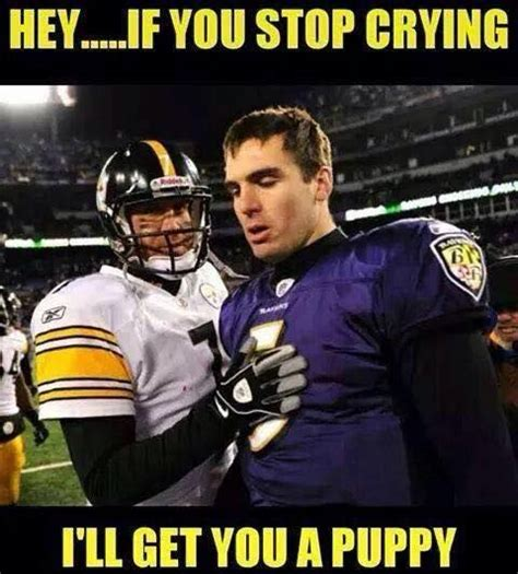 Ravens Memes - 60 best baltimore ravens hate images on pinterest baltimore ravens hate and comebacks