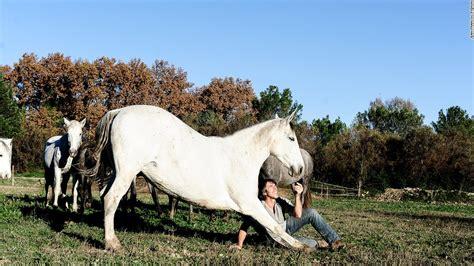stunts cnn telepathic horseman incredible horse