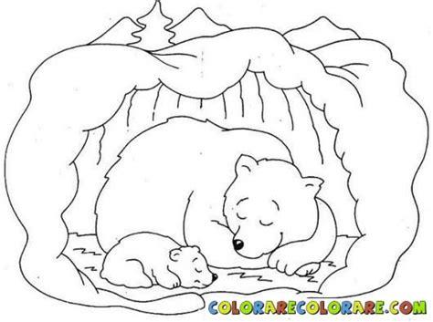 hibernation bear colouring pages bear coloring pages animal coloring pages hibernating bear