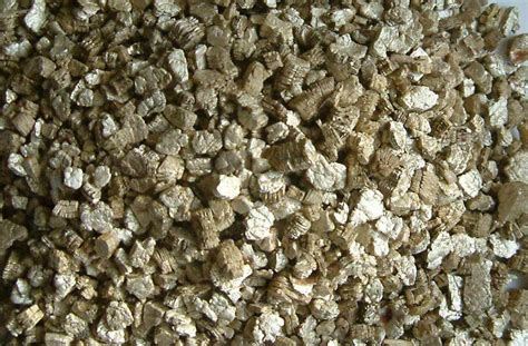 Vermiculite Vs Perlite Which Should You Use In Your
