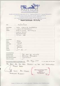Moving my dog from england to canada page 2 british expats for Fit to fly certificate template