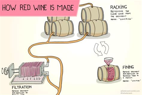 how is how is red wine made wine folly