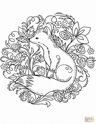 Coloring Fox Pages Animals Forest Printable Adult