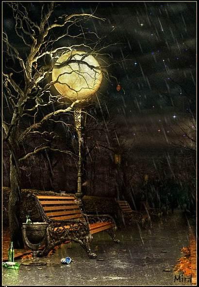 Night Raining Rainy Rain Autumn Weather Falling