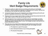 Best 25+ ideas about BSA Merit Badges | Find what you'll love