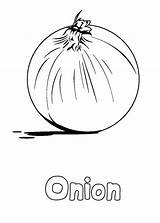 Coloring Onion Vegetables Vegetable Printable Kohlrabi Easy Colouring Sheets Adult Onions Visit Kid Draw sketch template