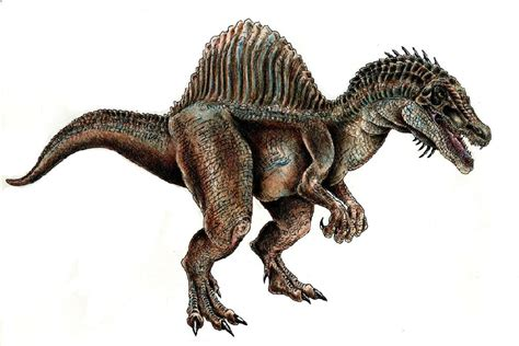 spinosaurus pictures facts dinosaur