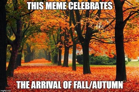 Fall Meme - march 20 imgflip