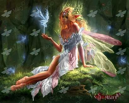 Fairies Fantasy Fairy Forest Elf Elfen 3d