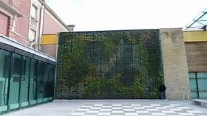 Mur Végétal Extérieur : fa ade v g talis e mur v g tal ext rieur vertical flore ~ Premium-room.com Idées de Décoration