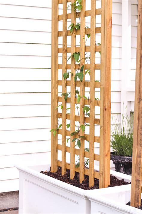 How To Build A Lattice Patio Trellis Planters Modern Patio Outdoor