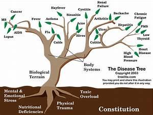 The Disease Tree U2122