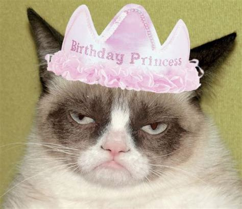 Birthday Grumpy Cat Meme - grumpy cat birthday blank template imgflip