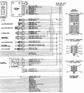 Dodge Dakota Wiring Diagrams : 2002 dodge dakota pcm wiring diagram gallery ~ A.2002-acura-tl-radio.info Haus und Dekorationen