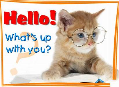 Hello Hi Greeting Whats Cards Greetings Card