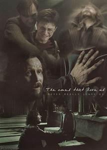 apparently they... Sirius Azkaban Quotes