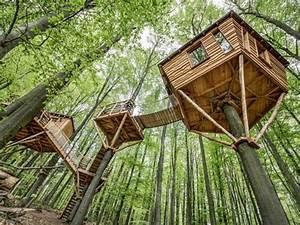 Cabane Dans Les Arbres Construction : cabanes dans les arbres 45 id es de construction et d co dormir dans une cabane dans les ~ Mglfilm.com Idées de Décoration