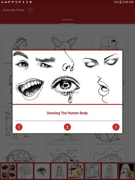 drawing animals apk   entertainment app