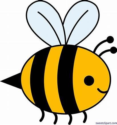 Bee Bumble Cartoon Clip Clipart Bumblebee Happy
