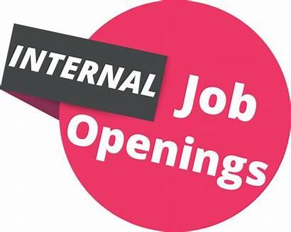 Job Internal Opportunities Openings Career Associates Position