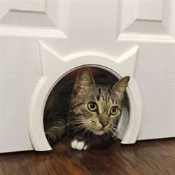 kitty cats kitty pass interior cat door the green